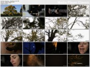 PJ HARVEY - The Glorious Land (2011) - 1 music video (official, logo free VOB)