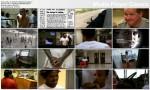 Za kratkami / Hard Time (2010) PL.TVRip.XviD / Lektor PL
