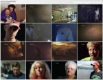 Tajemnice tragedii / Decoding Disaster (2007) PL.TVRip.XviD / Lektor PL